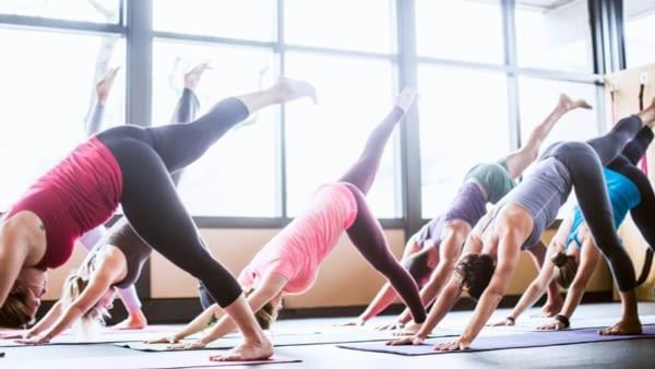 Workout   Free hand   Fitness   Yoga